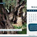 Kalender 2020: Ontdek Israël met Bayless Conley 6