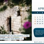Calendar 2020: Inspiration from the Holy Land 4